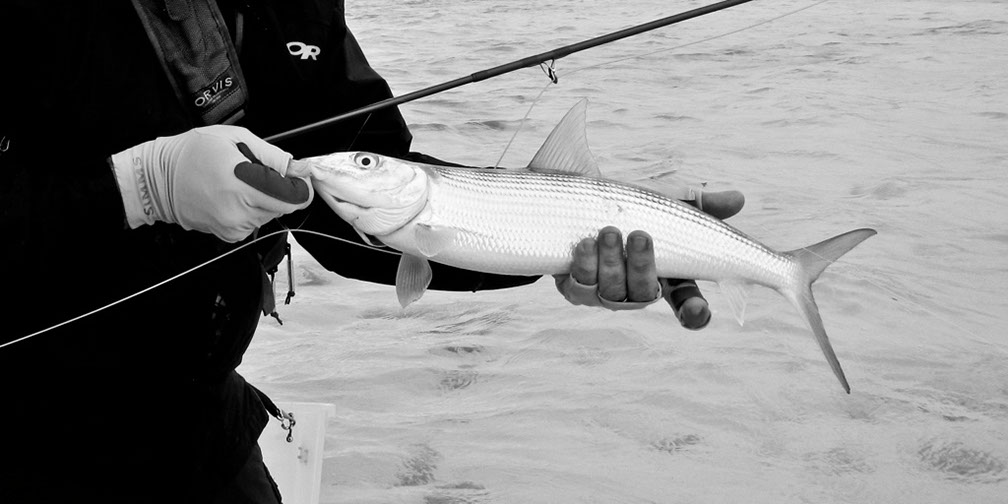 image of AARONTAIT COPYRIGHTED 2014 347 CHRISTMAS ISLAND KIRITIMATI KIRIBATI BONEFISH FLY FISHING BLACK WHITE LANDSCAPE SEASCAPE